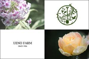 Ueno_farm_13